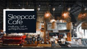 Sleepcat Cafe คาเฟ่ในสวน วิวดี ๆ มุมถ่ายรูปจำนวนมาก